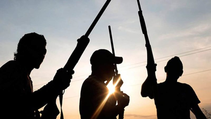 Why Bandits Kidnapped 600 Katsina Students – Olusegun Bamgbose