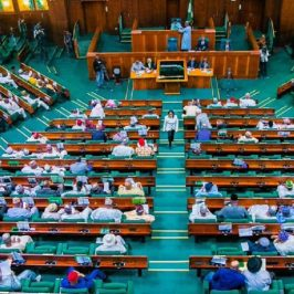 Reveal Lawmaker Identified As Nnamdi Kanu, Sunday Igboho's Sponsor - Reps To Buhari