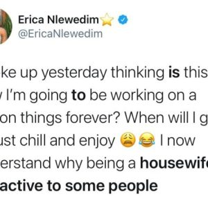 Ngerians Reacts After BBNaija Erica Said She 'Why Being A Housewife Is Attractive To Some People'